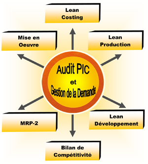 AUDIT PIC and MANAGEMENT DEMAND